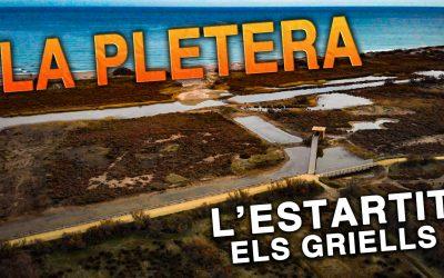 Natural area La Pletera.